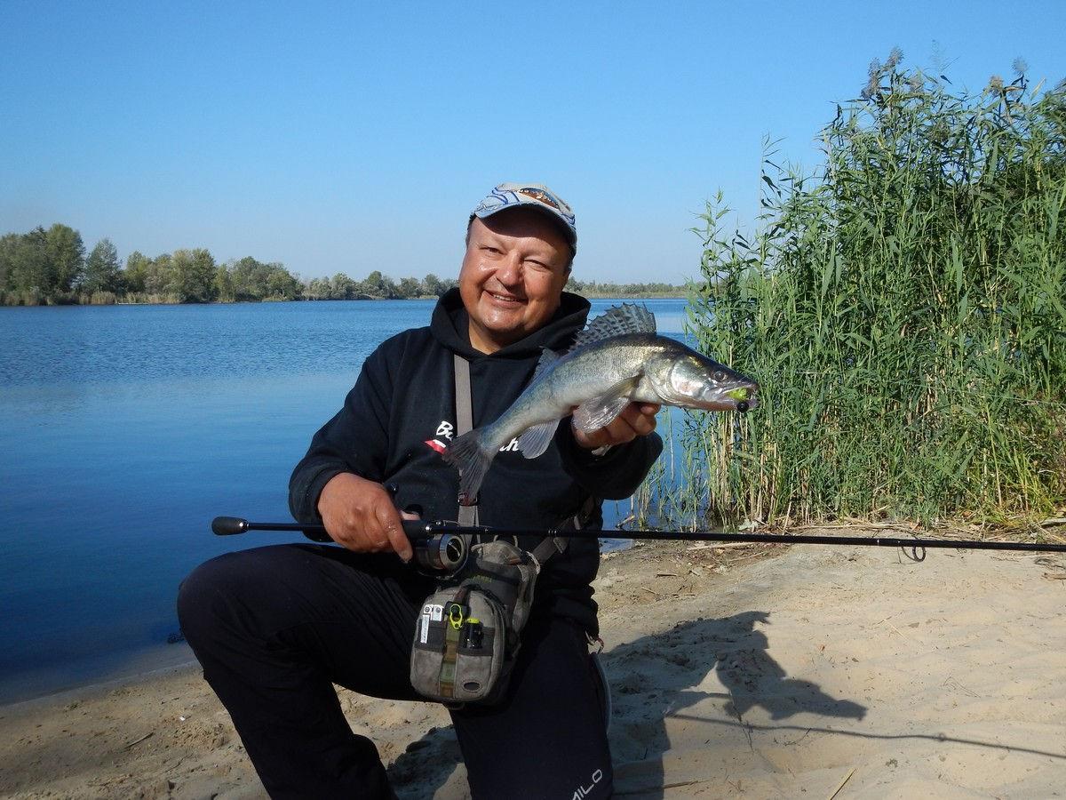 осенняя рыбалка на судака с силиконовой приманкой мик маус
