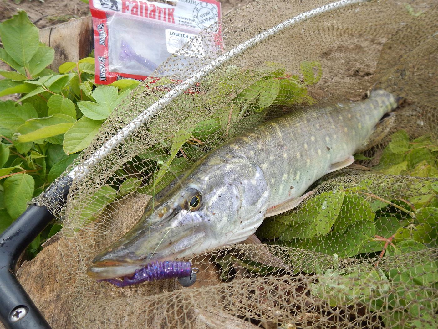 рыбалка бурса